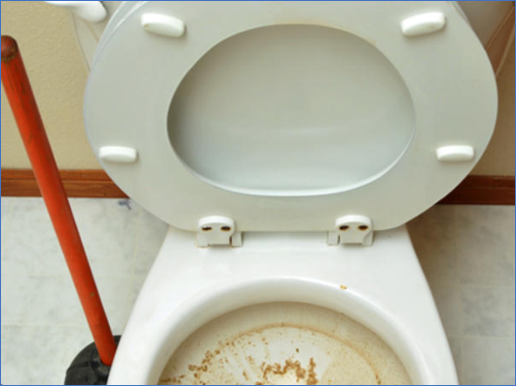 A dirty toilet means customers will not return