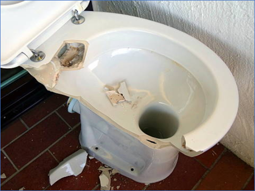 A broken toilet means a health and safety issue
